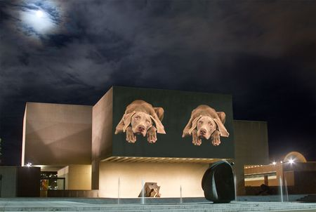 WilliamWegman_FloFlow2012